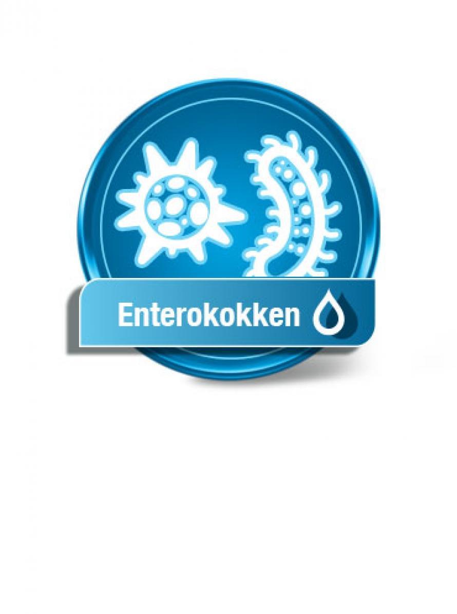 enterokokken im trinkwasser die wasseranalyse auf enterokokken. Black Bedroom Furniture Sets. Home Design Ideas
