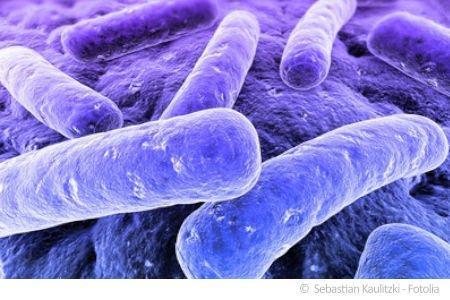 Bevorzugt Bakterien im Trinkwasser - wie kann das sein? IS54