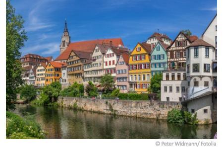 Wasserqualität Neckar
