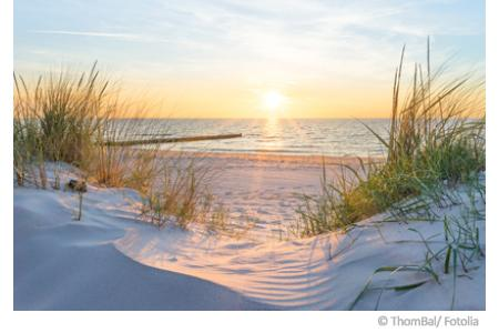 Wasserqualität der Ostsee