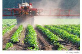 Nitrat im Trinkwasser - ein Gesunheitsrisiko?