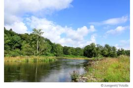 Die Wasserqualität der Ruhr