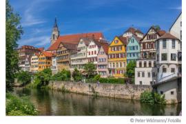 Die Wasserqualität des Neckars